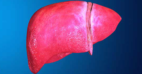Fatty Liver Disease Types, Risk Factors, Treatment and Prevention